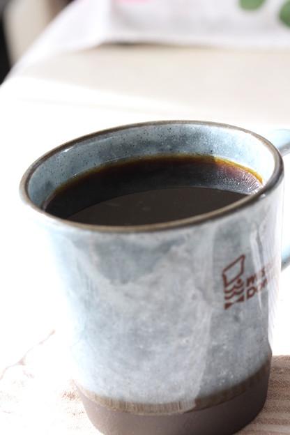 KALDI Precious Beans Of 100 Years Old Coffee Tree