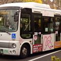 Photos: 飛鳥山にて…?