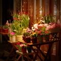 週末夜の花屋さん