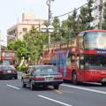 写真: 爽やかな休日の朝に連なる『スカイバス東京』