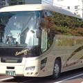 写真: 観光バス左側面での「天然のラッピング」