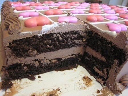 ハーフシートチョコレートケーキ断面2IMG_8679