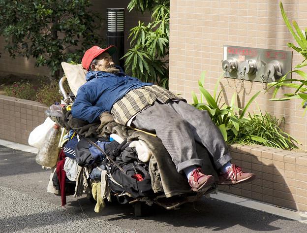 写真: Homeless_man,_Tokyo,_2008[1]