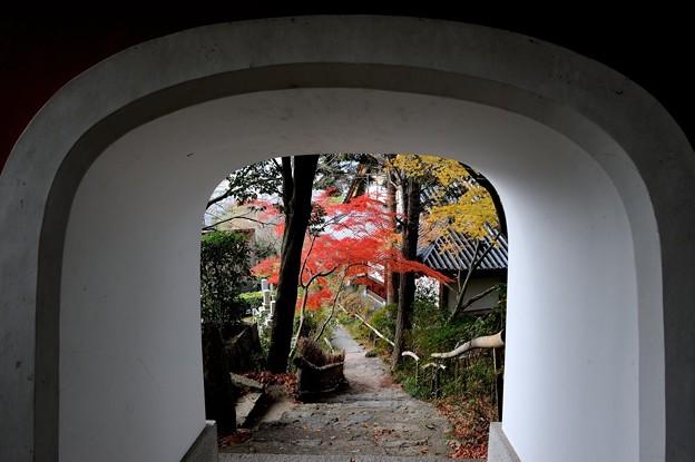 石峰寺五百羅漢 2010/12/12 12:33