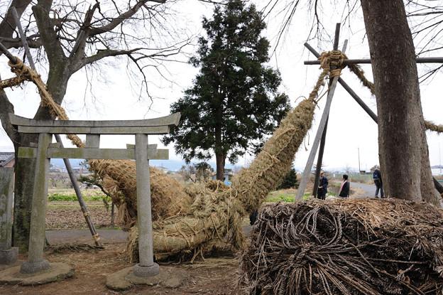 お綱祭 2010/02/11 13:11