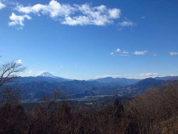 写真: 陣馬山より
