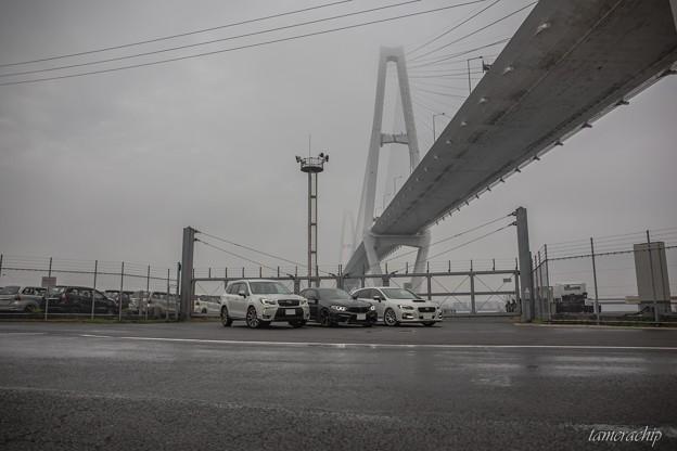 20171118-2017.11.18金城ふ頭プチオフ 076