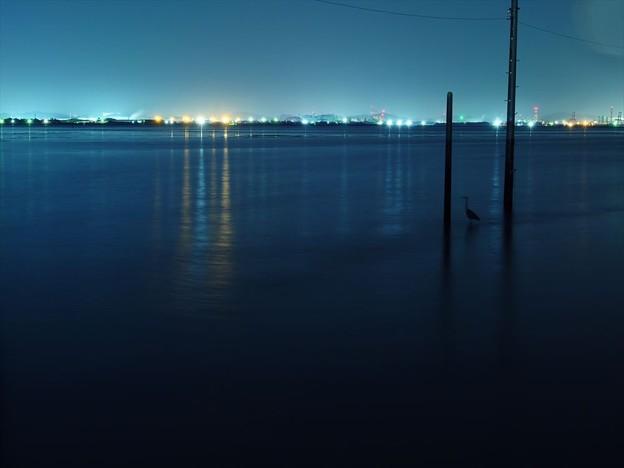 静かな海岸♪