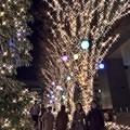 新宿イルミ2