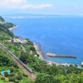 写真: 湘南電車