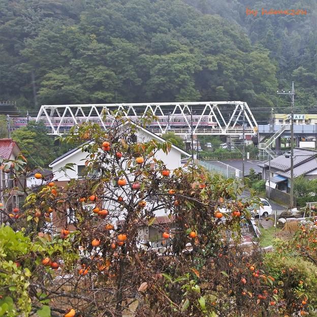 Photos: 秋色沿線(3)