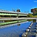 写真: 秋色沿線(17)