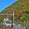 写真: 秋色沿線(18)
