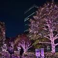 写真: 夜の街路地(1)