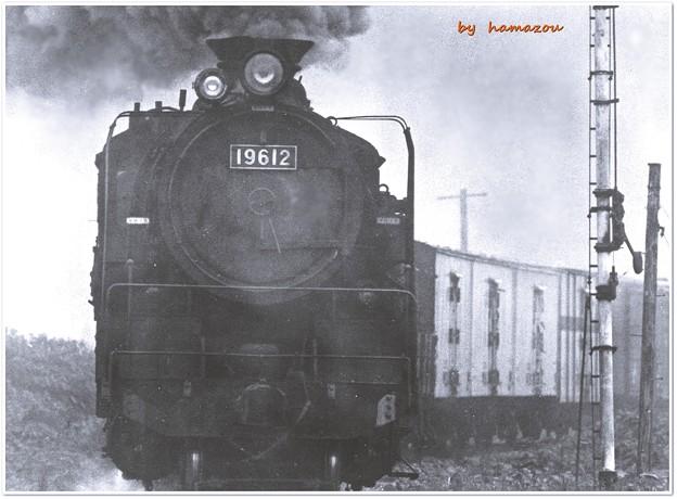 天北線の貨物列車