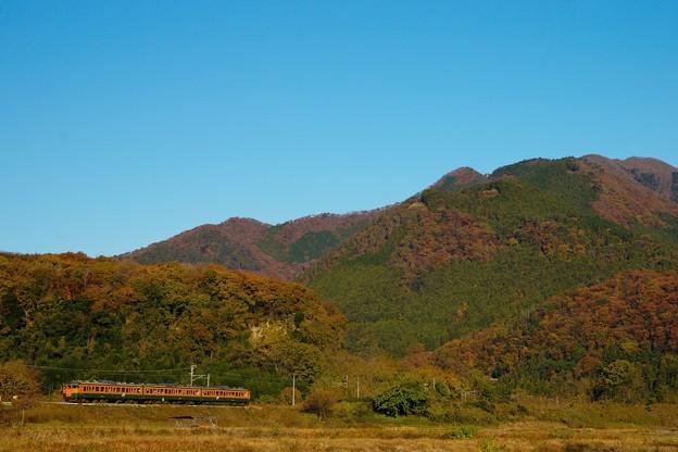 Photos: 燃ゆる山々と115系湘南色その1@小野上~祖母島