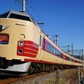 写真: 189系M51編成「ホリデー快速富士山」@赤坂~都留市