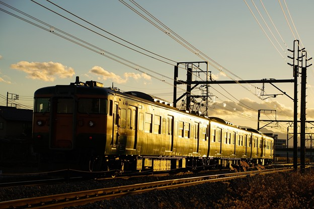 写真: まばゆい夕日に向かって115系湘南色が駆ける
