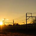写真: 美しい夕日を背に211系が今日も行く