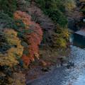 Photos: 奥多摩【氷川渓谷】2