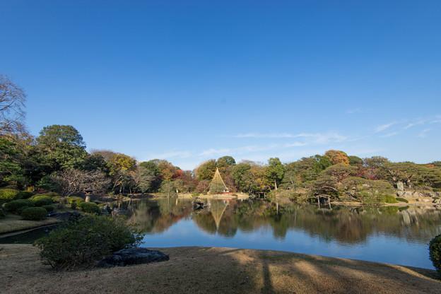 六義園【この湖は大泉水と言うそうです】
