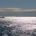 大黒ふ頭【大黒海釣り公園からの眺め】3
