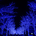 【青の洞窟】2