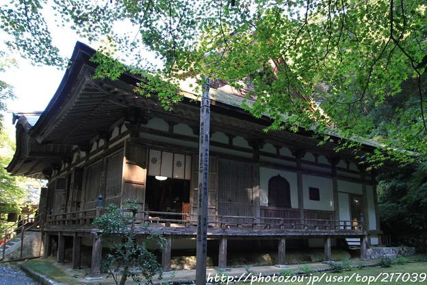 IMG_7130百済寺・本堂(重要文化財)と新緑