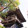 IMG_7219永源寺・鐘楼といろは紅葉