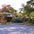 写真: IMG_7234永源寺