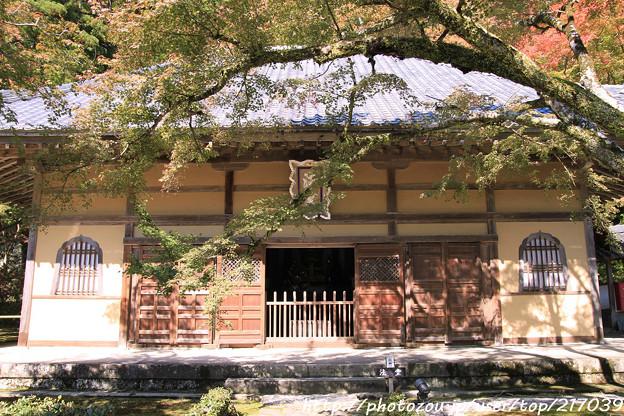 IMG_7240永源寺・法堂といろは紅葉