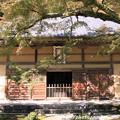 写真: IMG_7240永源寺・法堂といろは紅葉