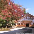 IMG_7270永源寺・僧堂といろは紅葉