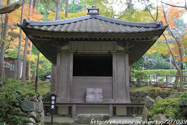 IMG_7295金剛輪寺(松尾寺)・西谷堂