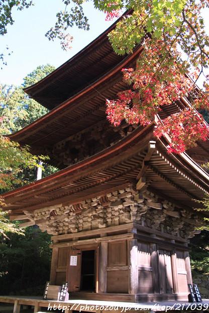 IMG_7465金剛輪寺・三重塔(重要文化財)といろは紅葉