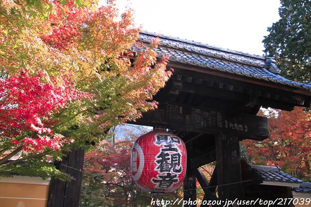 IMG_7481金剛輪寺・総門(黒門)といろは紅葉