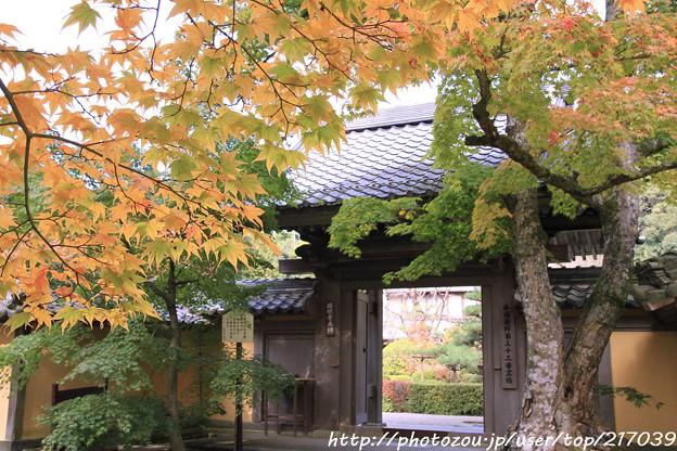 IMG_7566西明寺・いろは紅葉と門