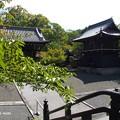 写真: 大雲院祇園閣 P9241260