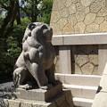 写真: 大雲院祇園閣 P9241266