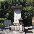 写真: 大雲院祇園閣 P9241277