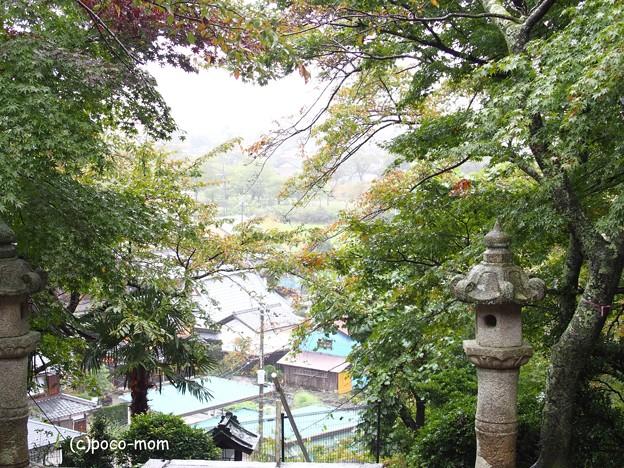 大澤寺 PA220257