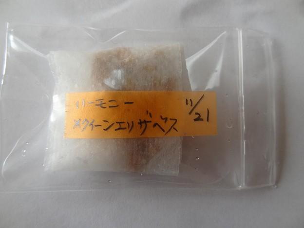 6misho29112101 (5) (1280x960)