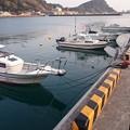 Photos: 油津港でひといき