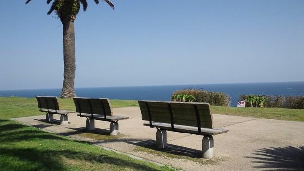 写真: 海が見えるベンチ