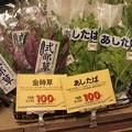 Photos: 金時草