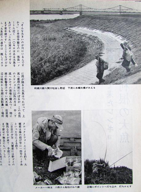 利根川でのレンギョ釣り