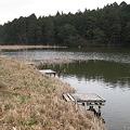 Photos: 大正地池