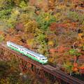 写真: 紅葉の只見線3橋俯瞰