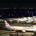 Photos: JALの巣