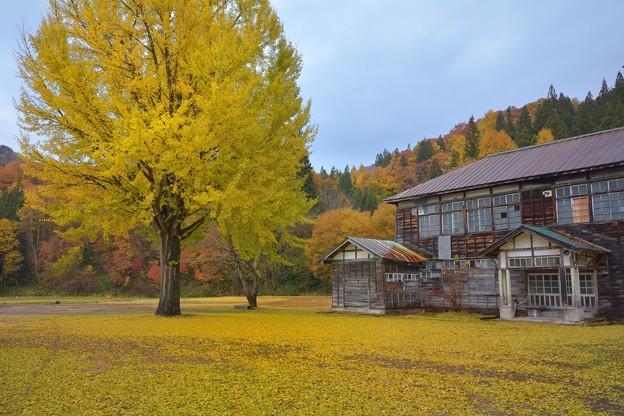 Photos: 在リシ子ラノ声ヲ聴ク